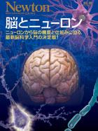 脳とニューロン